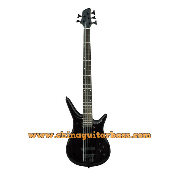 10 String Electric Bass